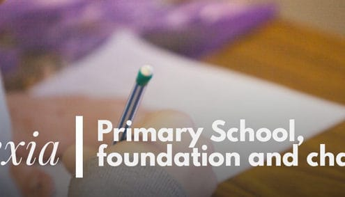 Primary School foundation and challenges