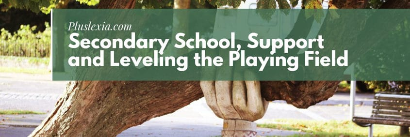 Secondary School, Support and Leveling the Playing Field